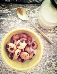 Paleo Cookie Crisp Cereal. (Gluten_Grain_Dairy Free)